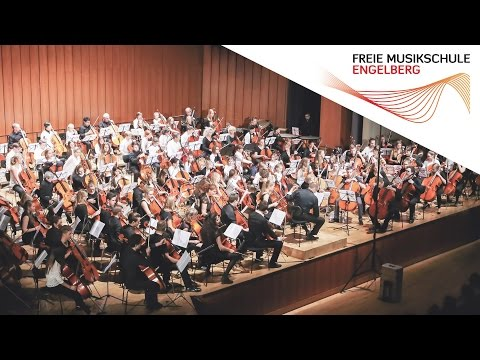 VIVA LA VIDA - Coldplay // 120 CELLOS // Deutsches Cello-Orchester