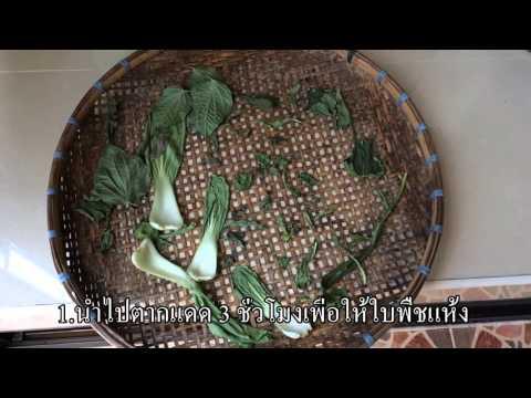 วิธีการรักษา Giardia ในลำไส้