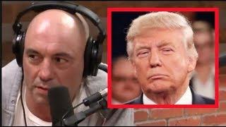 Joe Rogan - Is Trump Going to Jail?