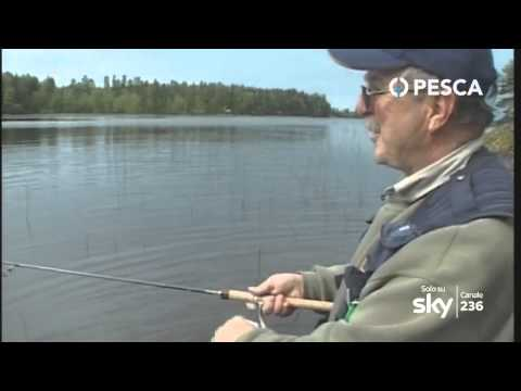 La pesca per giocare il posto di pesce