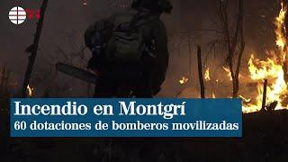 Unas 60 dotaciones de bomberos continúan trabajando en incendio de Montgrí