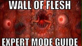 Terraria: Wall of Flesh Expert mode Full solo Guide