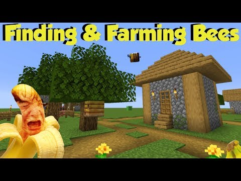 (1.15) Finding & Farming Bees (Ft Trying To Eat 15 Bananas)