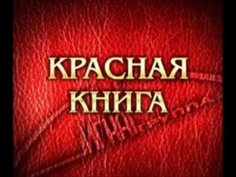 Птица счастья официальный сайт в челябинске