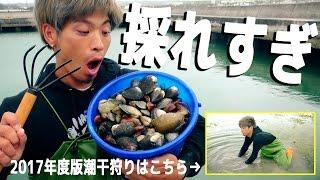 沖縄1の潮干狩りスポットを発見しました。