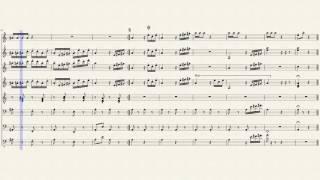 Sirba (V. Cosma) short version