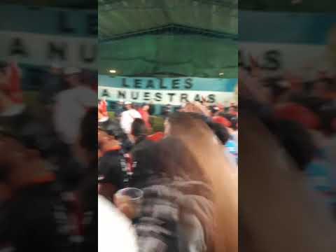 """""""esta la banda loca del millonario . los borrachos del tablon 14"""" Barra: Los Borrachos del Tablón • Club: River Plate • País: Argentina"""