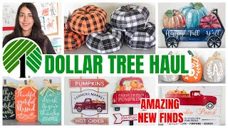 MUST WATCH DOLLAR TREE HAUL NEW FINDS 2020