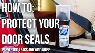 Protect Car Rubber Door Seals to Stop Wind Noise and Freezing