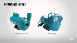 Centrifugal Pumps - The Basics