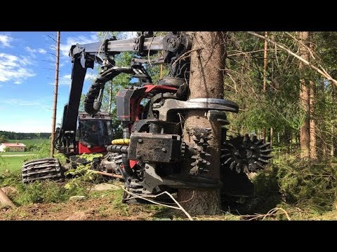 World&#39s Modern Long Reach Excavator Machine Working - Heavy Equipment Cutting Big Tree Machine