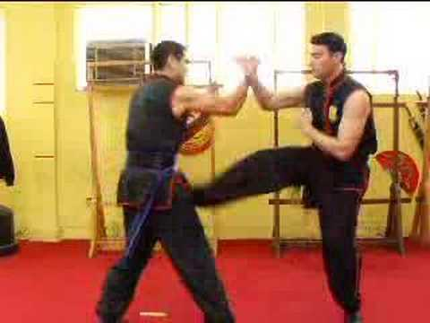 Wing Chun Back Kick Tutorial and Applications
