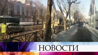 В Екатеринбурге деревья украсили к Новому году, а потом спилили вместе с гирляндами.