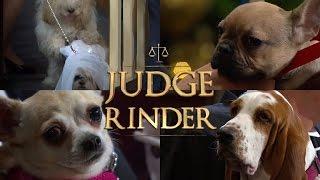 Dogs In Court! | Judge Rinder