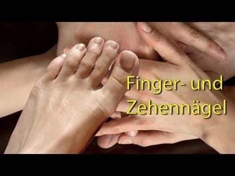 Gribok auf der Haut des Körpers die Behandlung der Salbe schtsch