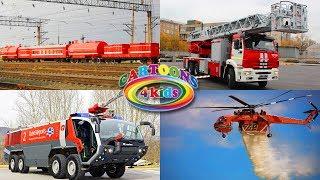 Изучаем транспорт и спецтехнику для детей. Развивающее видео про пожарные машины