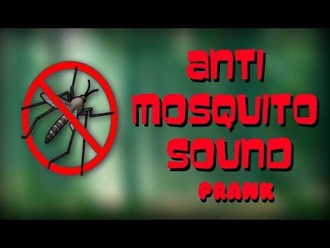 Vídeo do Anti-Mosquito Som Truque