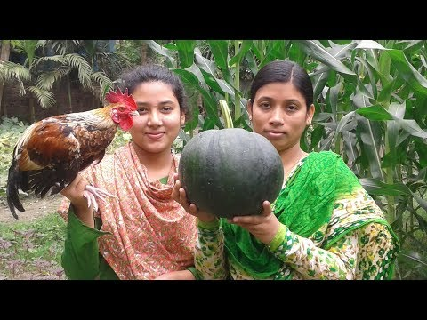 Chicken and Green Pumpkin Curry | Village Style Chicken Recipe | Cooking By Street Village Food