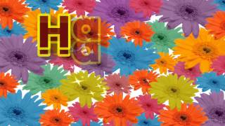 Happy Thursday Greeting Card | Video Greeting Happy Thursday
