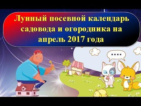 Чернобыль гороскоп на