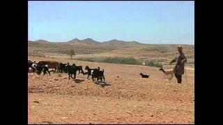 チュニジア遺跡