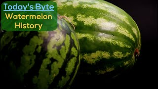 Watermelon History