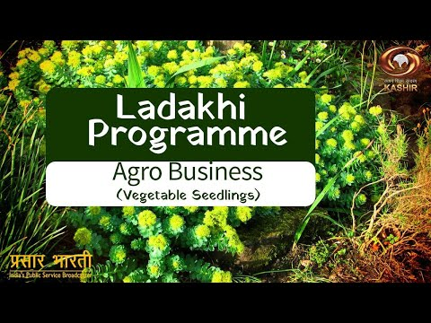 Download Ladakhi Programme: Special episode on Agro Business, Vegetable Seedlings   12.05.2020 Mp4 HD Video and MP3