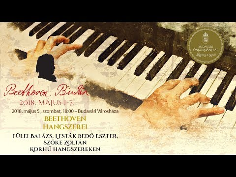 Beethoven Budán 2018 - Beethoven hangszerei - video preview image