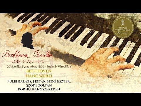 Beethoven Budán 2018 - Beethoven hangszerei - video preview image