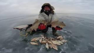 3 Января. Экстремальная рыбалка на Маныче. Юрий Философ. 2017 год.