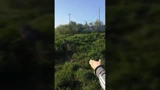 Отчеты о рыбалке в прокопьевске