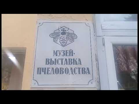 Улей Лужкова. Музей НИИ Пчеловодства.