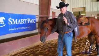 Tack Advice - Using A Curb Chain - Tom McCutcheon