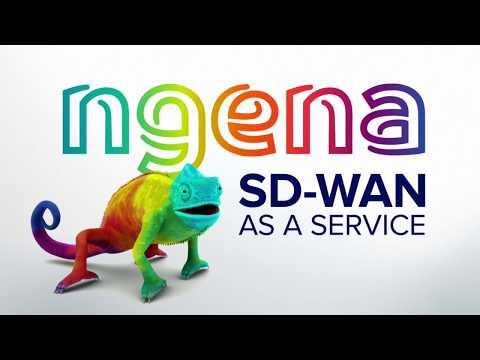 ngena SD-WAN como un servicio: el acelerador