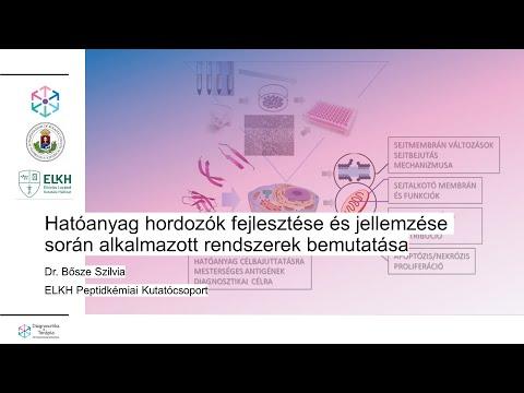A prosztatitis és a kezelés szakaszai