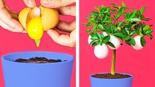 37 ABSOLUTELY INCREDIBLE LIFE HACKS