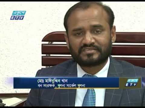 সুন্দরবন সুরক্ষায় প্রকল্প নিয়েছে বন বিভাগ | ETV News