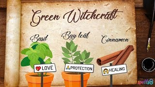 🌿🔮 Green Witchcraft: Magical And Medicinal Uses Of Bay Leaf, Basil & Cinnamon