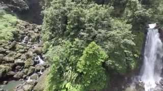 preview picture of video 'Trafalgar Falls, Dominica, West Indies'