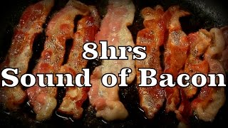 "8hr The Sound of Bacon ""Sleep Sounds"