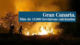 Un rayo de esperanza para el incendio en Gran Canaria gracias a la bajada de temperaturas