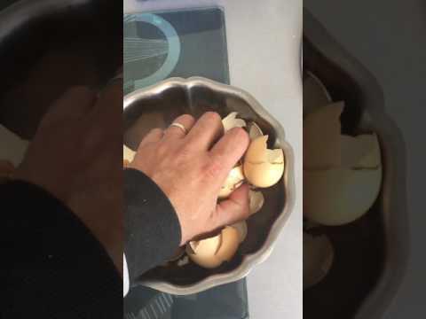 Le goudron de bouleau à lintérieur aux parasites