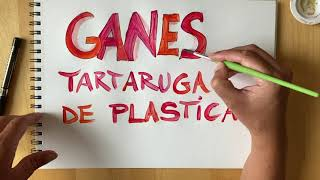 NEW VIDEO: Tartaruga de Plastica