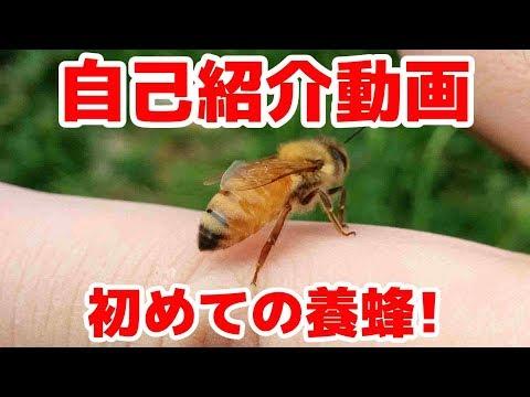 , title : '野生の蜜蜂を捕まえて養蜂家になるまで
