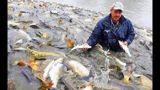РЫБАК НАШЕЛ РЫБНОЕ МЕСТО ! КОГДА ОН РЫБУ ВЫТАЩИЛ ВСЕ ПОПАДАЛИ ОТ ЕГО УЛОВА ! Вот это Рыбалка 2018