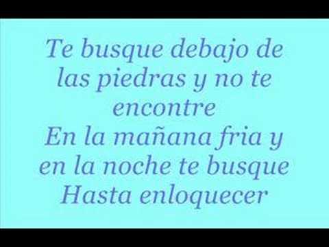 Te Busqué (Full Spanish Version)