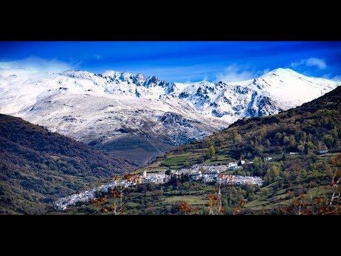Águila calzada de Granada | La Taha de Pitres, La Alpujarra