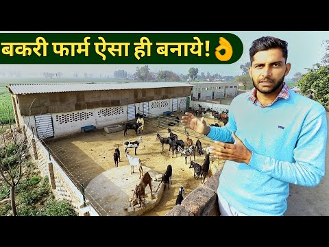 , title : 'मॉडर्न बकरी फार्म ऐसे बनाये How to Make/Start Goat Farm in hindi Shed design India 9350146903
