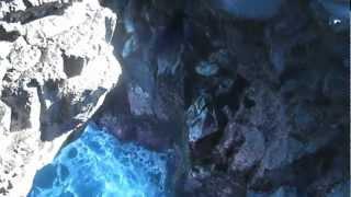 preview picture of video 'Souffleur d'Arbonne - Saint-Philippe - Ile de la Réunion - Reunion Island 03'