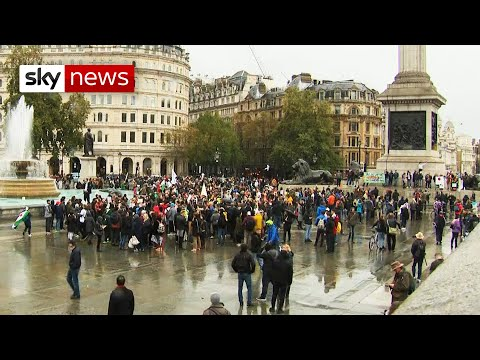 Coronavirus: Hundreds attend anti-lockdown protest in London